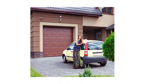 Секционные гаражные ворота Alutech Prestige, филенка 2250 х 2000 мм